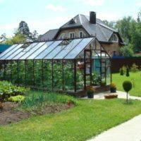 elite classique greenhouse
